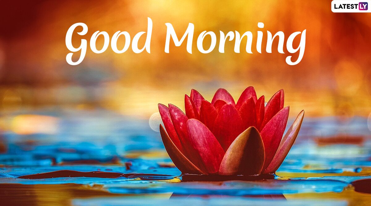 Send Good Morning HD Images & Wishes to Family & Friends ...