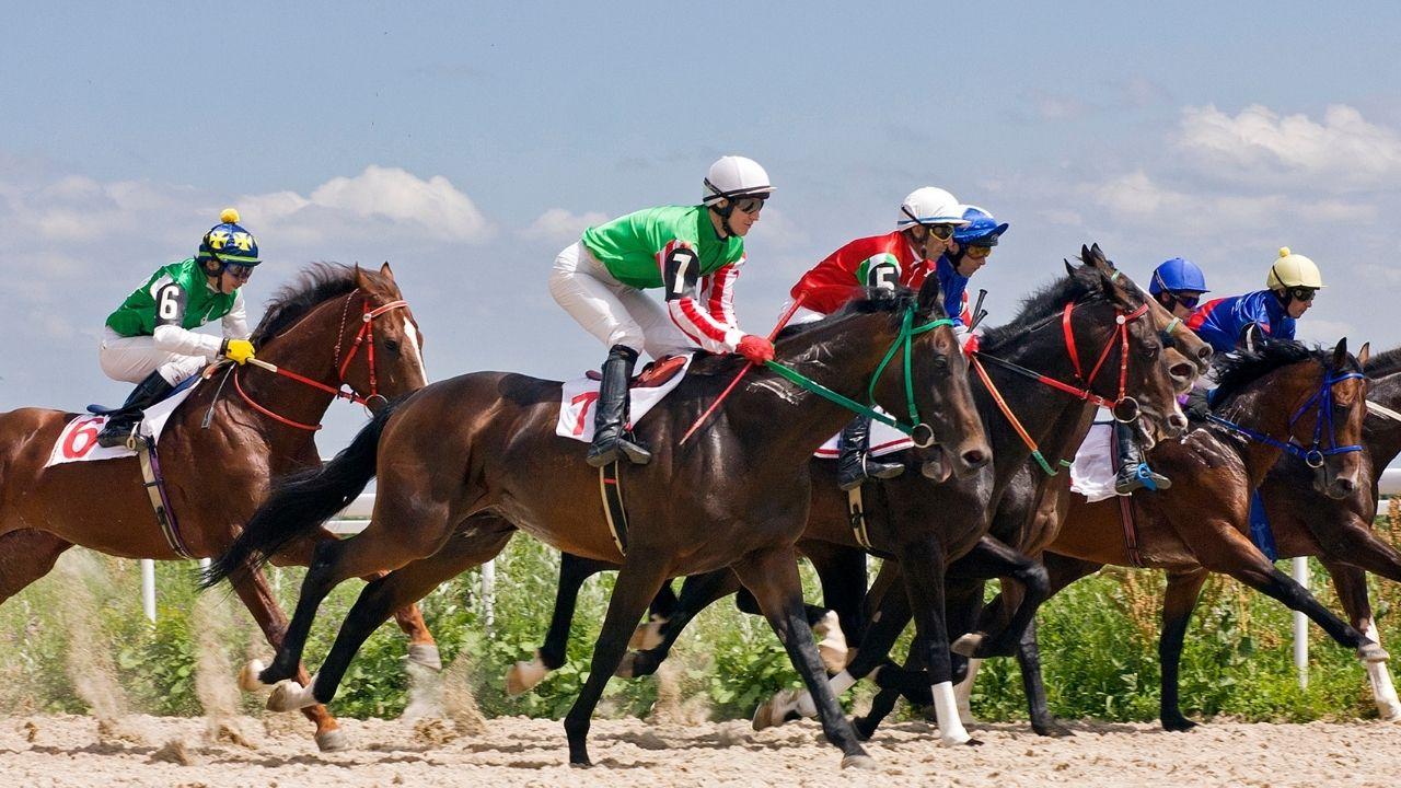 make money horse betting
